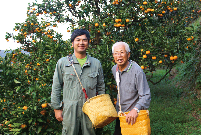 温州みかん 生産者、和歌山県海南市川端敬グループ 川端敬さん(右)と息子の宏幸さん
