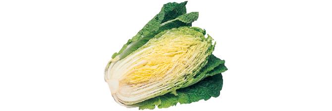 ぎゅっと凝縮甘み白菜