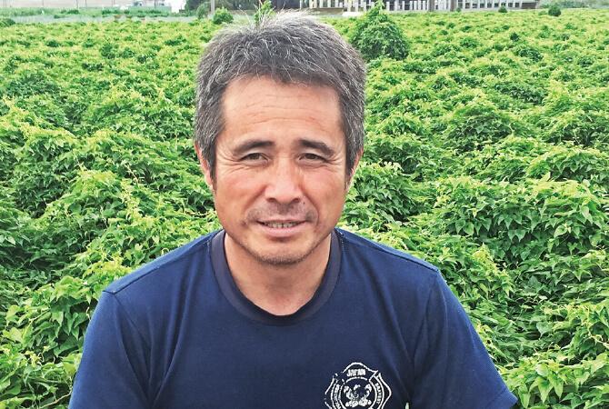 ムキねぎ生産者、埼玉県熊谷市岡村グループ 岡村文男さん