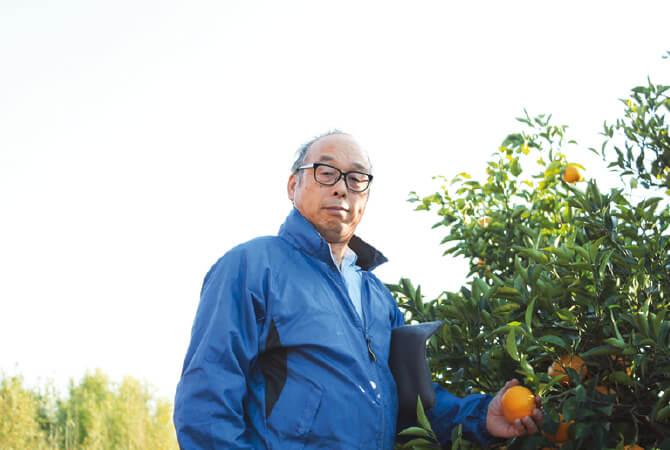 樹上で完熟させたさわやか甘夏の生産者、静岡県静岡市 望月美秀さん