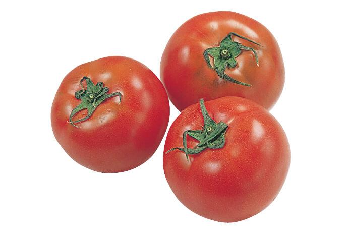 夏野菜の定番、トマト