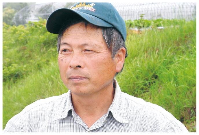 チンゲンサイ生産者、群馬県高崎市 くらぶち草の会 佐藤茂さん