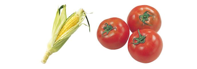 とうもろこし・1本 &水切り栽培のうま夏トマト・400g