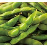今年も枝豆が立派に育ちました。