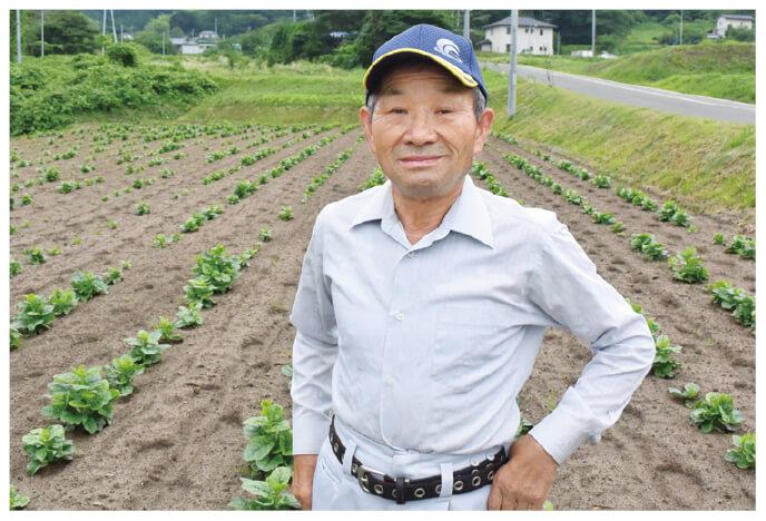 つるむらさき生産者、福島県福島市 福島わかば会 安田和昭さん