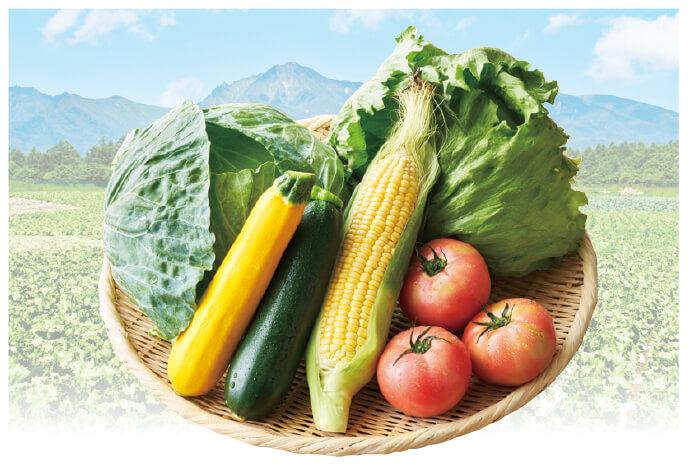 八ヶ岳・軽井沢から 夏の高原野菜セット イメージ画像