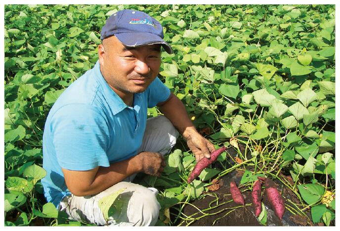 さつまいもの生産者、鹿児島県志布志市かごしま有機生産組合 薗田真さん