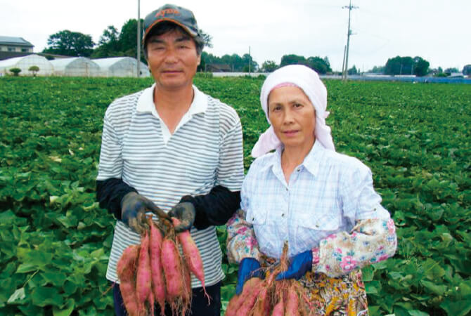 ほくほくさつまいも・紅あずまの生産者、茨城県行方市 堀田信宏さんと美智子さん