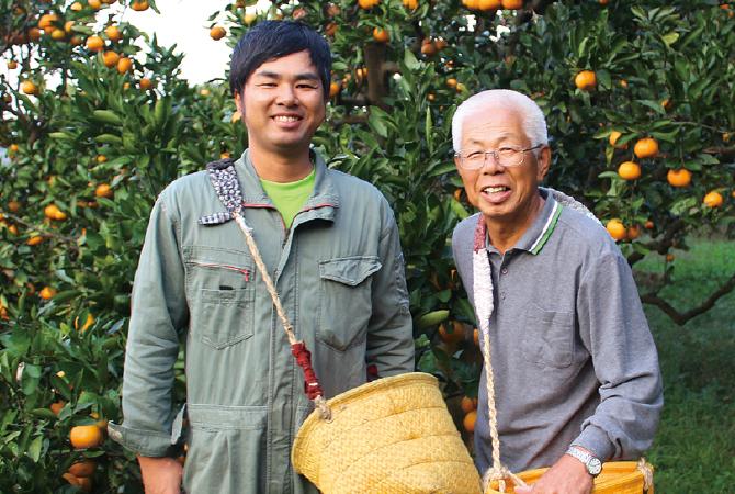 極早生温州みかん生産者、和歌山県海南市 川端 敬グループ 川端 敬さん(右)・息子の宏幸さん