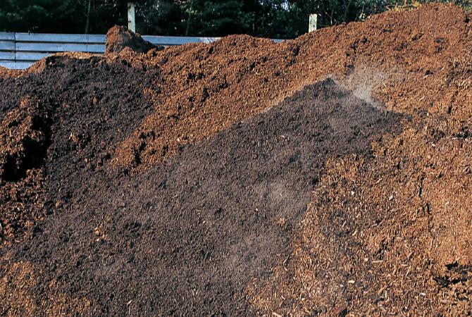 畑の裏の堆肥の山