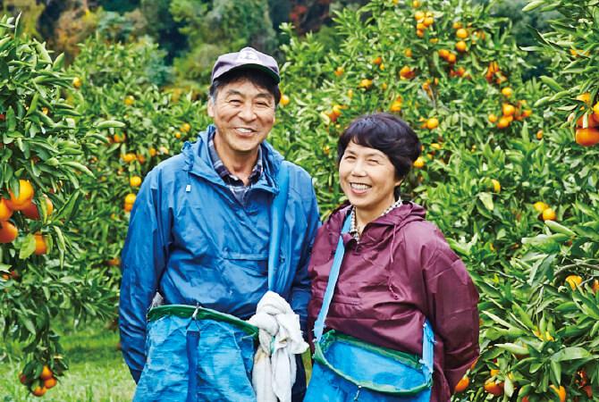 温州みかん生産者、熊本県宇城市 ブレス 波村 郁夫さんと雅子さん