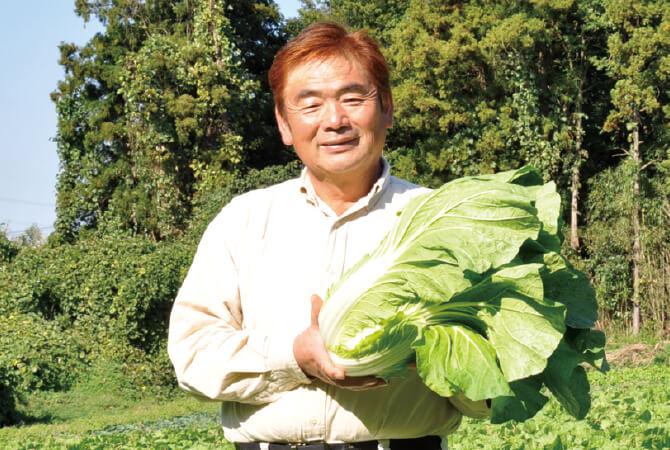 白菜生産者、茨城県八千代町 小野寺孝一さん