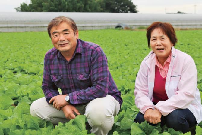 キャベツ生産者、茨城県八千代町 小野寺 孝一さんときよ子さん