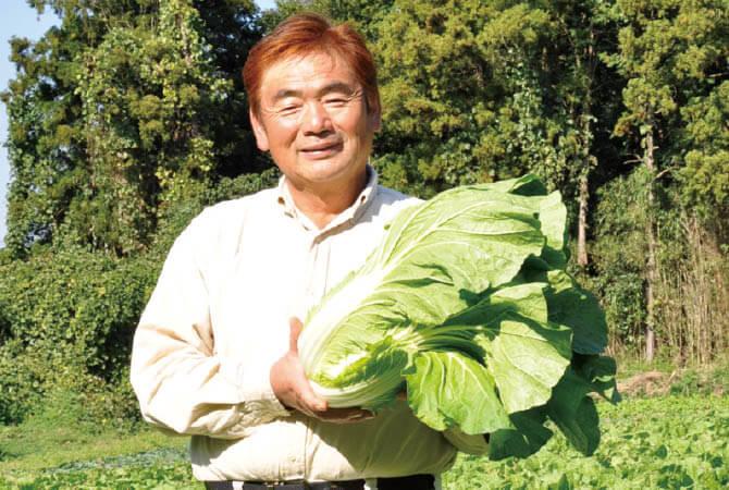ぎゅっと凝縮甘み白菜 生産者、茨城県八千代町 小野寺 孝一さん