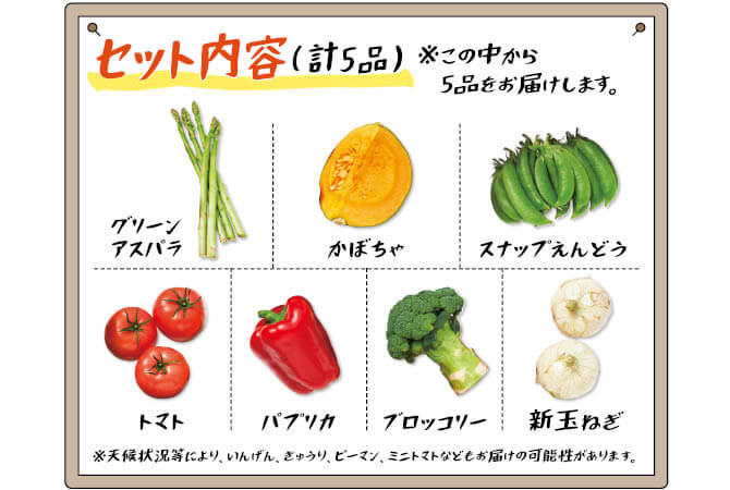 春をさきどり!九州・沖縄野菜セット セット内容