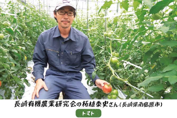 トマトの生産者、長崎有機農業研究会の柘植康史さん(長崎県南島原市)