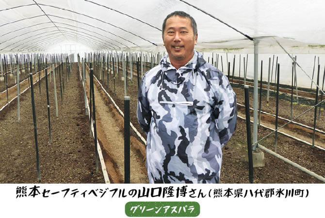 グリーンアスパラの生産者、熊本セーフティベジタブルの山口隆博さん(熊本県八代郡氷川町)