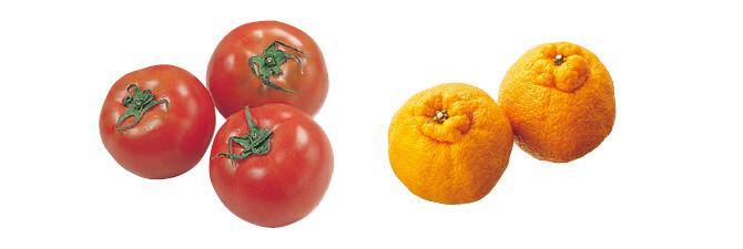トマト・400g&本場・熊本のコク甘しらぬい・450g