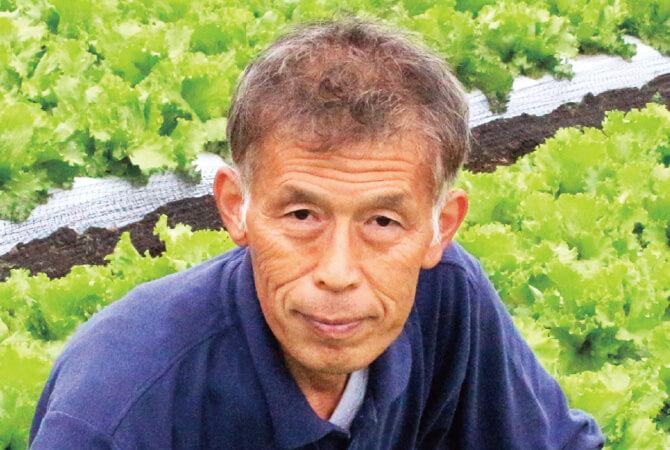 レタス生産者、茨城県坂東市 飯塚一実さん