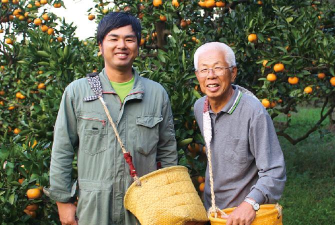 樹上で完熟させたさわやか甘夏生産者、和歌山県海南市 川端 敬グループ 川端 宏幸さん・敬さん
