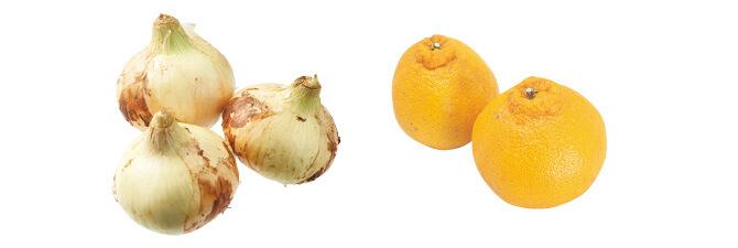 九州の新玉ねぎ・500g&しらぬい(柑橘)・450g