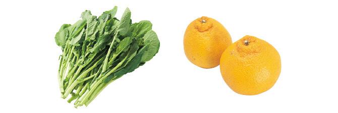 日本むかし野菜・春の菜っぱ・200g&しらぬい(柑橘)・450g