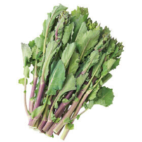 暖かいこの時季限定のお楽しみは「春の菜っぱ」!