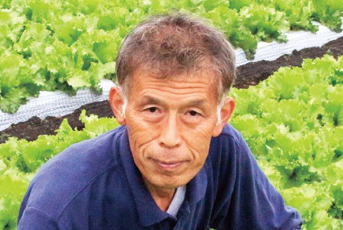 春のレタス生産者、茨城県坂東市 飯塚一実さん