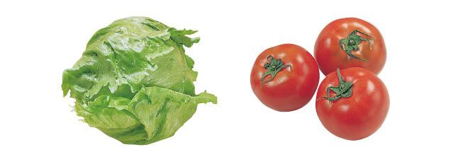 春のレタス・1コ&トマト・400g