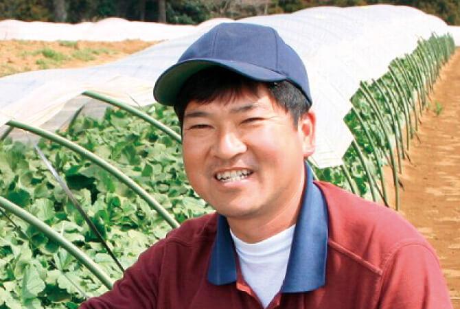 春のサラダかぶ生産者、千葉県山武市 さんぶ野菜ネットワーク 吉田邦雄さん