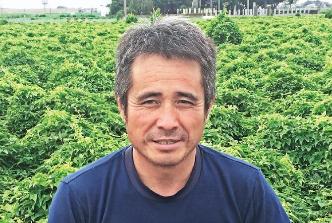 ブロッコリー生産者、埼玉県熊谷市 岡村グループ 岡村 文男さん