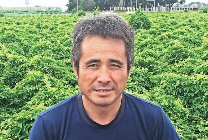 ブロッコリー生産者、埼玉県熊谷市 岡村グループ 岡村文男さん