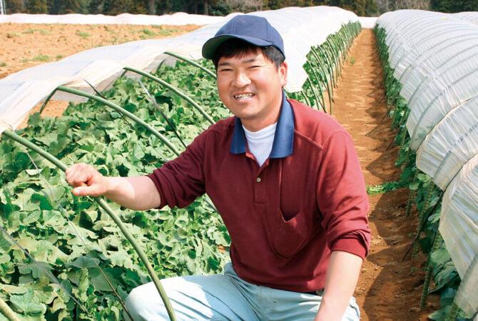 人参生産者、千葉県山武市 さんぶ野菜ネットワーク 吉田邦雄さん