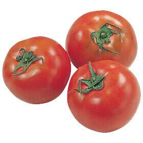 なるほど台所帖vol.58:夏野菜の保存方法