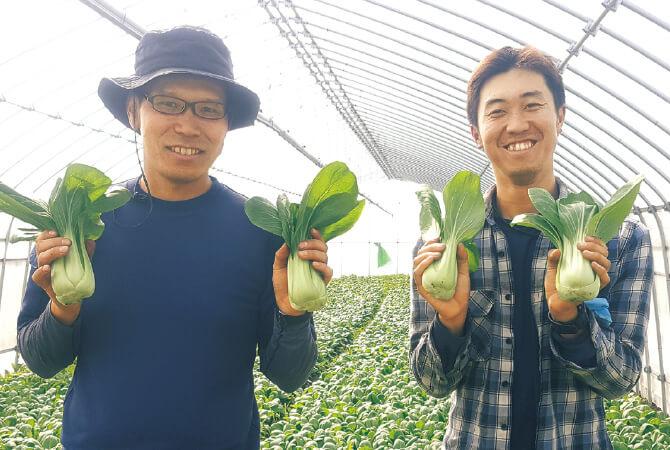 チンゲンサイ生産者、群馬県昭和村 野菜くらぶ 木暮昌弘さん(左)と綿貫直也さん