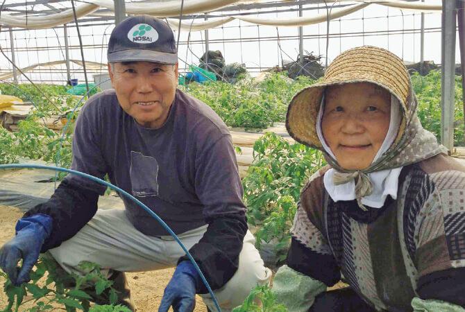 水切り栽培のうま夏トマト生産者、福島県玉川村 福島わかば会 高林邦男さんと廣子さん