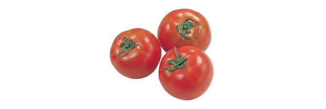 水切り栽培のうま夏トマト