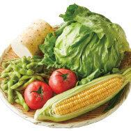「夏の食卓彩り野菜セット」をご用意しました!