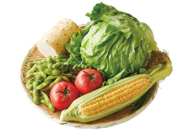 夏の食卓彩り野菜セット イメージ画像