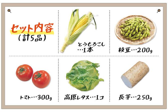 夏の食卓彩り野菜セット セット内容