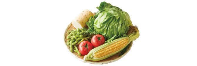 夏の食卓彩り野菜セット