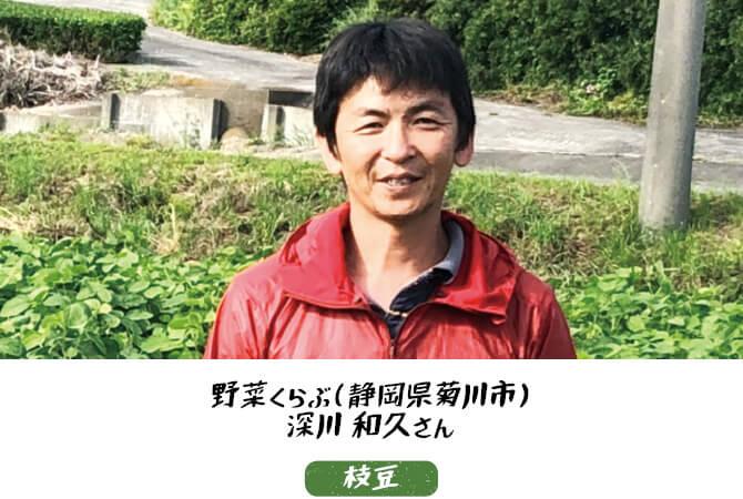 枝豆生産者、静岡県菊川市 野菜くらぶ 深川和久さん