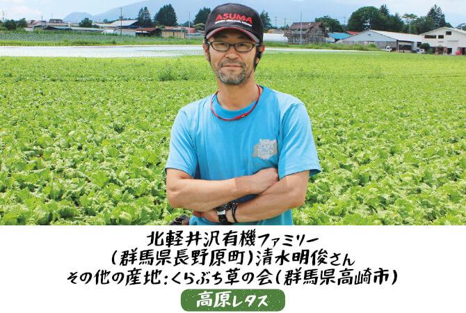 高原レタス生産者、群馬県長野原町 北軽井沢有機ファミリー 清水明俊さん