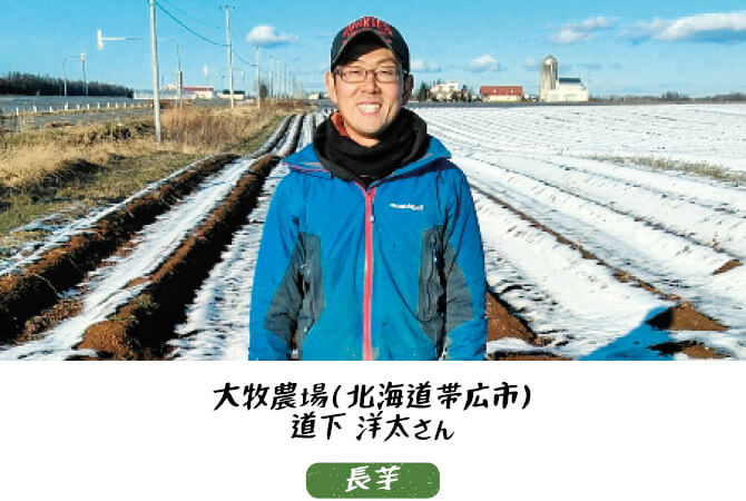 長芋生産者、北海道帯広市 大牧農場 道下洋太さん