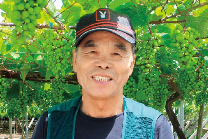 デラウェア(種なしぶどう)生産者、山梨県甲州市 勝沼平有機果実組合 渡辺孟さん