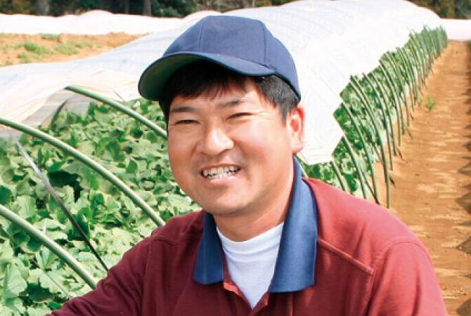 モロヘイヤ生産者、葉県山武市 さんぶ野菜ネットワーク 吉田邦雄さん