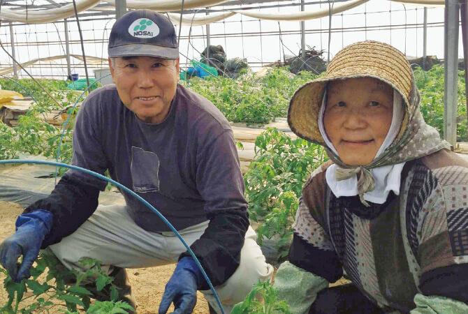 トマト生産者、福島県玉川村 福島わかば会 高林邦男さん・廣子さん