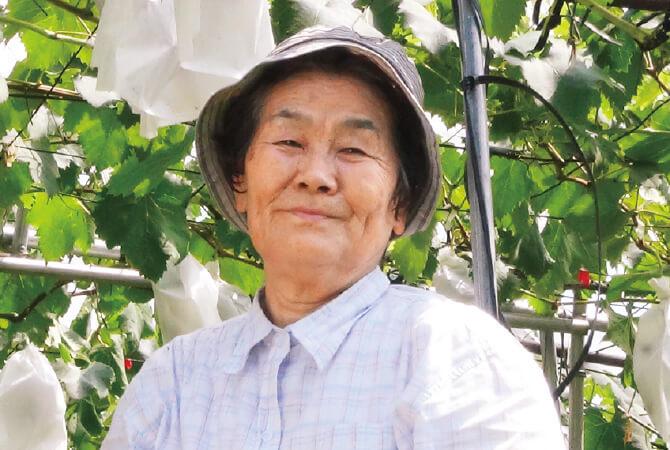 巨峰(ぶどう)生産者、熊本県宇城市 ブレス 山口洋子さん