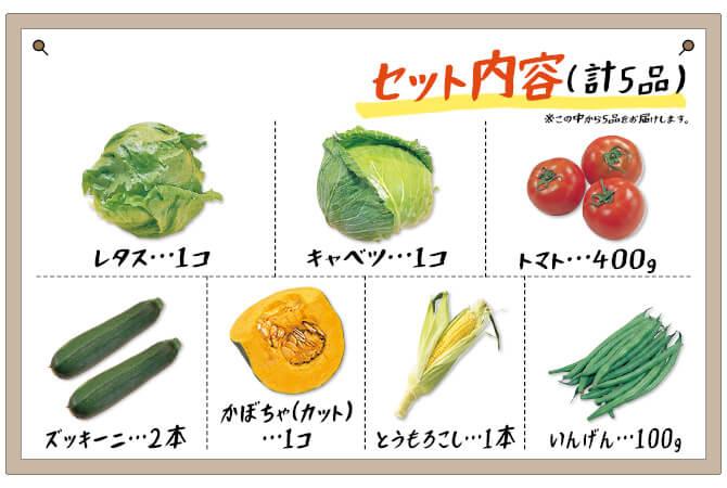 『八ヶ岳・軽井沢から 夏の高原野菜セット』内容詳細