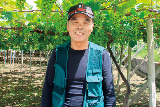 シャインマスカット(種なしぶどう)生産者、山梨県甲州市 勝沼平有機果実組合 渡辺孟さん